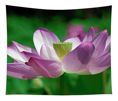 Lotus--center Of Being Vi Dl0086 Tapestry