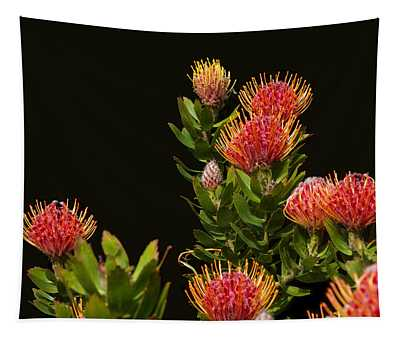 Lovely Protea Group Tapestry