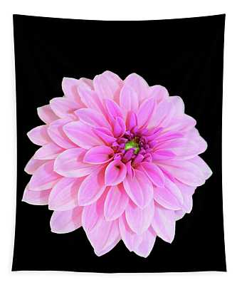 Luscious Layers Of Pink Beauty Tapestry