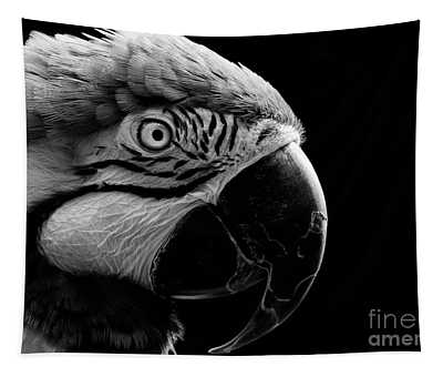 Macaw Parrot Portrait Black And White Tapestry