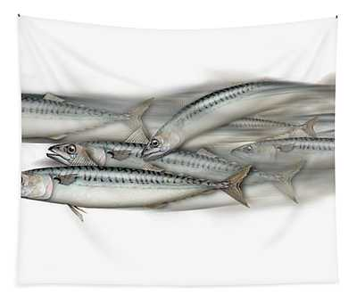 Mackerel School Of Fish - Scomber - Nautical Art - Seafood Art - Marine Art -game Fish Tapestry