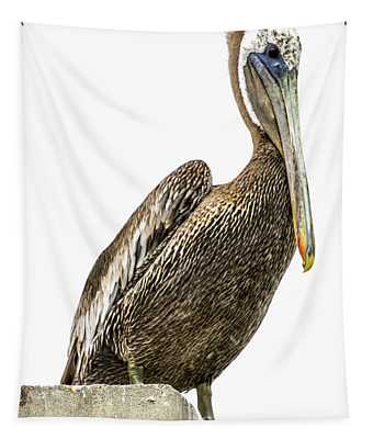 Majestic Gulf Shores Pelican 1071a Tapestry