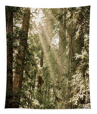 Magical Forest 2 Tapestry