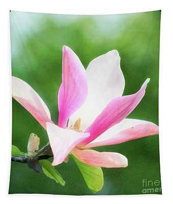 Magnificent Daybreak Magnolia At Day's End Tapestry