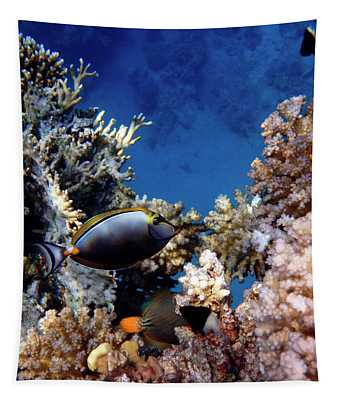 Magnificent Red Sea World Tapestry