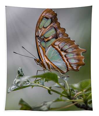 Malachite Butterfly Profile Tapestry