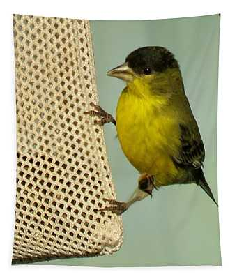 Male Goldfinch On Sock Feeder Tapestry