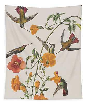 Mango Humming Bird Tapestry