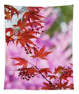 Maple Tapestry