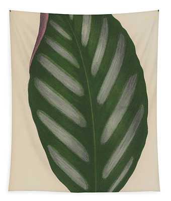Maranta Porteana Tapestry