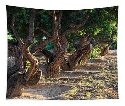 Mastic Tree   Tapestry