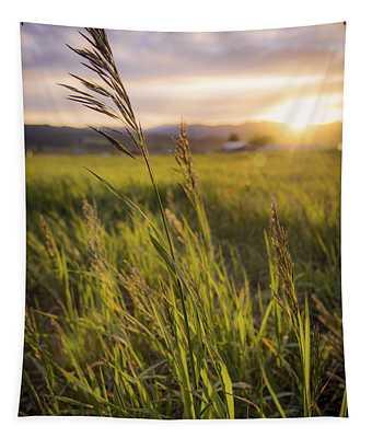 Wild Grass Photographs Wall Tapestries