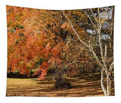 Michigan Autumn 1 Tapestry