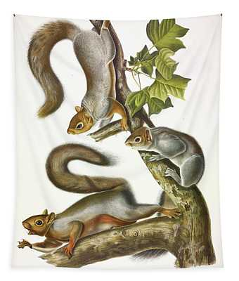 Migratory Squirrel Tapestry
