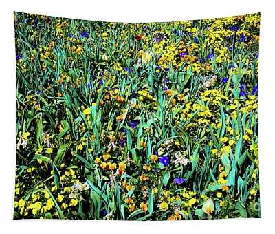 Mixed Wildflowers In Texas Tapestry