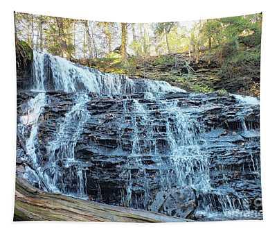 Mohawk Falls 2 - Ricketts Glen Tapestry