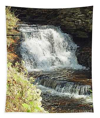 Mohican Falls 5 - Ricketts Glen Tapestry