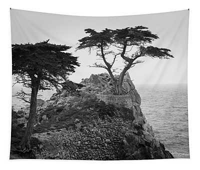 Monterey Peninsula II Bw Tapestry