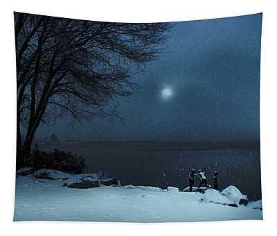 Moonlight Romp Tapestry