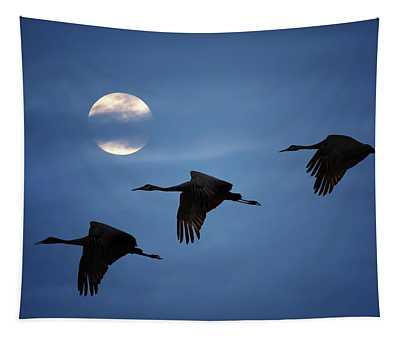 Moonlit Flight Tapestry