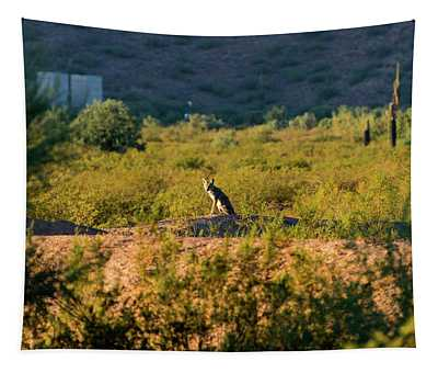 Morning Coyote Tapestry