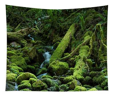 Mossy Stream Bed Tapestry