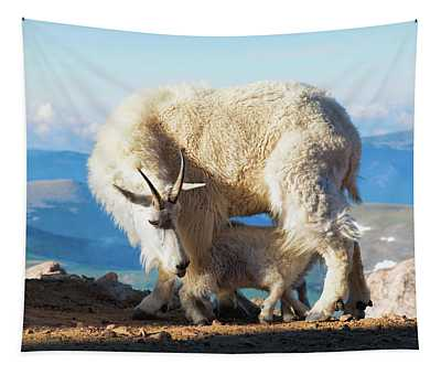 Mountain Goats Nanny And Kid Tapestry