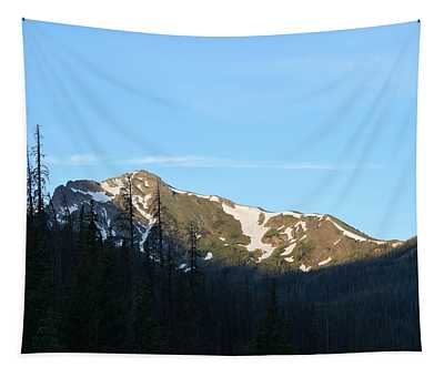 Mountain In Rocky Mountian Np Co Tapestry