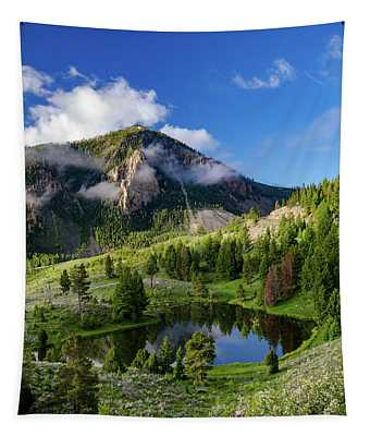 Bunsen Peak Mountain Tapestry