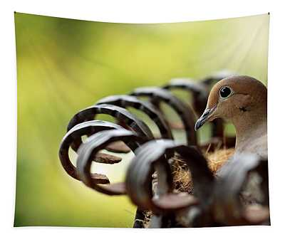 Mourning Dove In A Flower Planter Tapestry