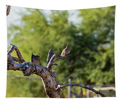 Mourning Dove In Old Tree Tapestry