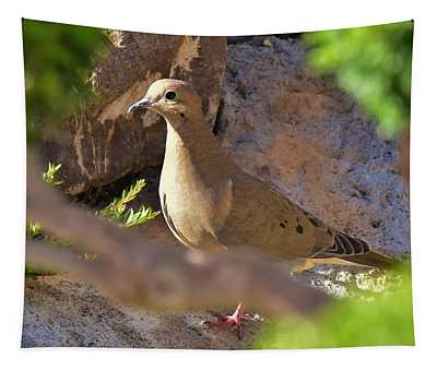 Mourning Dove On The Hillside Tapestry