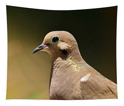 Mourning Dove Portrait I Tapestry