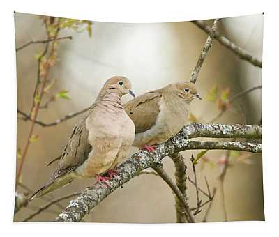 Mourning Doves 4142 Tapestry