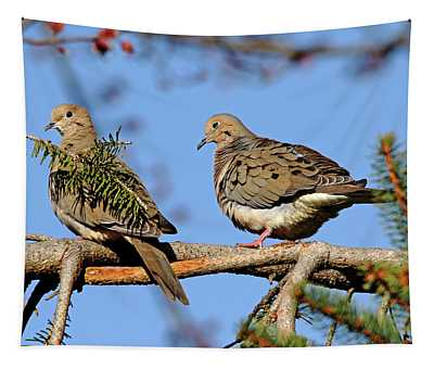 Mourning Doves In Spring Tapestry