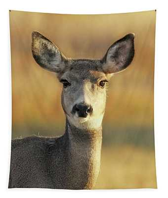 Mule Deer Autumn Portrait Tapestry