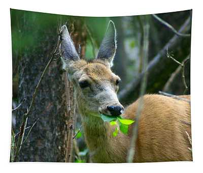 Mule Deer Eating Aspen Leaves Tapestry