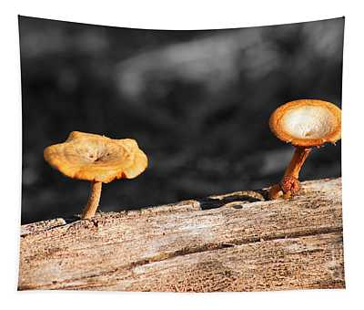 Mushrooms On A Branch Tapestry