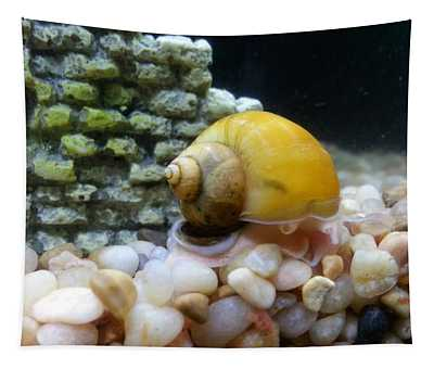 Tapestry featuring the photograph Mystery Snail by Robert Knight