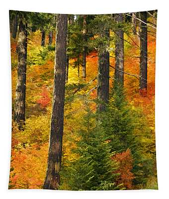 N W Autumn Tapestry