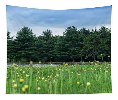 Evergreen Lake - A Groundhog View Tapestry