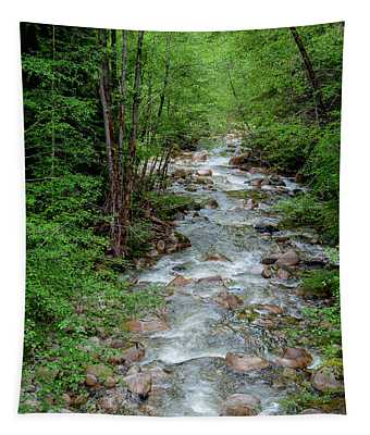 Naturally Pure Stream Backroad Discovery Tapestry