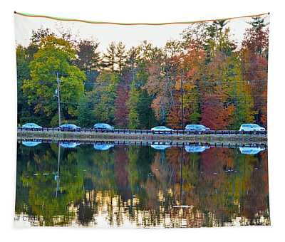 Nature And Manmade Reflections Tapestry