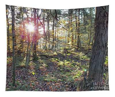 Nature's Beauty - Ricketts Glen Tapestry