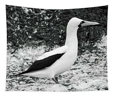 Nazca Booby Side View Tapestry