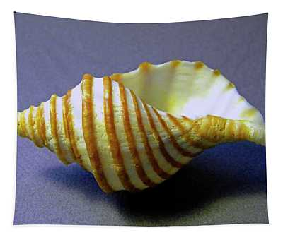 Neptune Whelk Seashell Tapestry