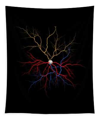 Neuron X1x Example Tapestry