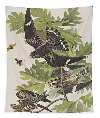 Night Hawk Tapestry