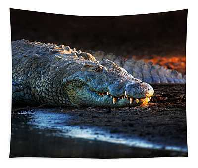 Nile Crocodile On Riverbank-1 Tapestry