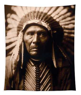 North American Indian Series 2 Tapestry